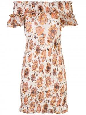 Платье мини со сборками и цветочным принтом Shona Joy. Цвет: нейтральные цвета