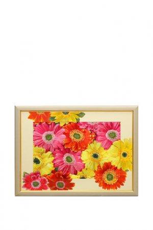 Картина с подрисовкой Герберы Живой шелк. Цвет: розовый, желтый