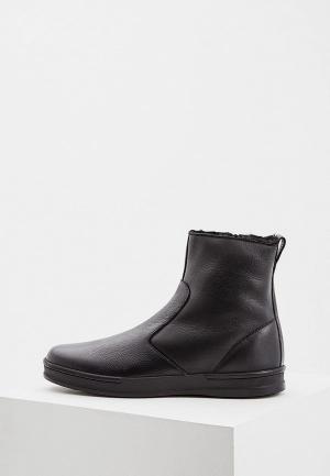Ботинки Aldo Brue AL232AMCKEO8. Цвет: черный