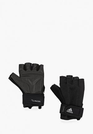 Перчатки для фитнеса adidas TRAIN CLC GLOVE. Цвет: черный
