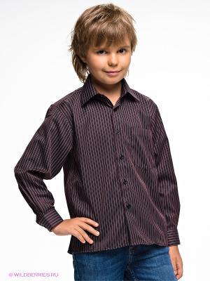 Рубашка Davani. Цвет: черный, красный