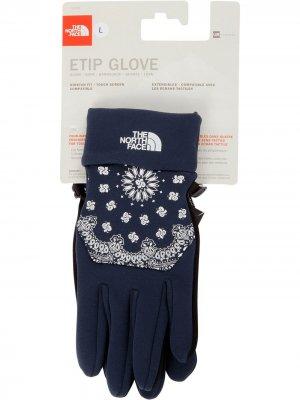 Перчатки TNF Etip Supreme. Цвет: синий