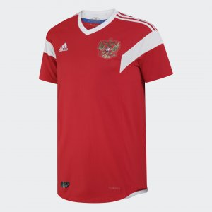Футболка RFU H JSY P Performance adidas. Цвет: красный