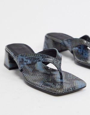 Синие кожаные шлепанцы на среднем каблуке со змеиным рисунком ASOS DESIGN-Многоцветный
