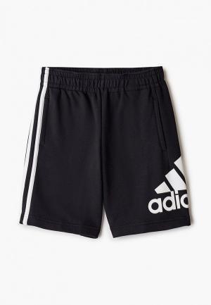 Шорты adidas. Цвет: черный